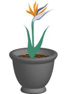 3D Flower Pot